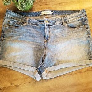 Torrid size 22 cuff jean shorts